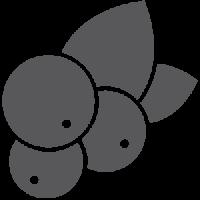 procapil-grey
